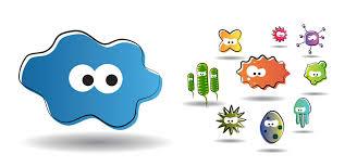 amoeba-biocide